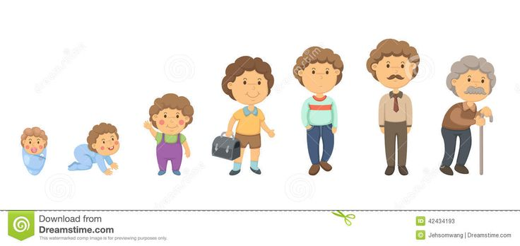 Stages Of Human Life Cycle For Kids images & pictures ...